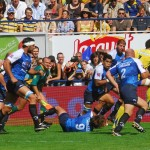 ASM_MHRC_TOP14_88
