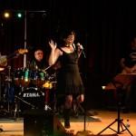 volcanomad_concert_19