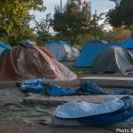 Migrants-4286